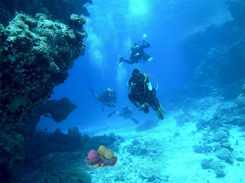 diving-813028_1280